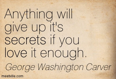 Anything Will Give Up It's Secrets...
